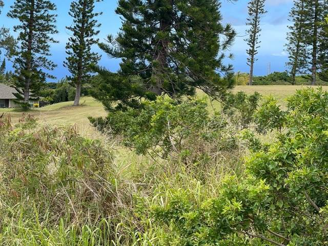 Kaulua St, Naalehu, HI 96772 (MLS #651197) :: Aloha Kona Realty, Inc.