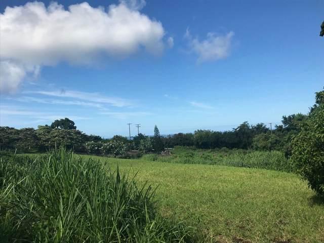 Kanele St, Captain Cook, HI 96704 (MLS #651368) :: Corcoran Pacific Properties
