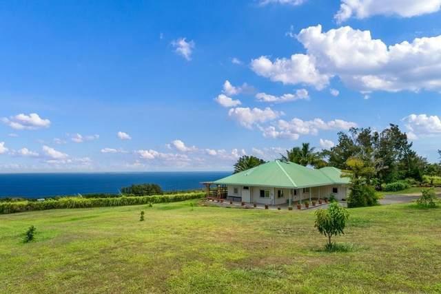 44-2580 Kalopa Rd, Honokaa, HI 96727 (MLS #651570) :: Aloha Kona Realty, Inc.