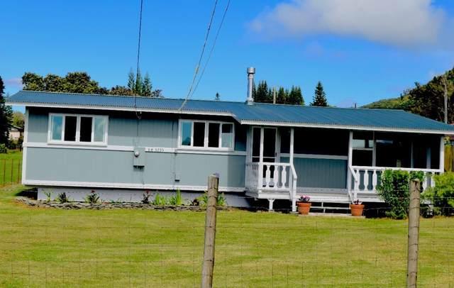 64-5293 White Rd, Kamuela, HI 96743 (MLS #651664) :: LUVA Real Estate