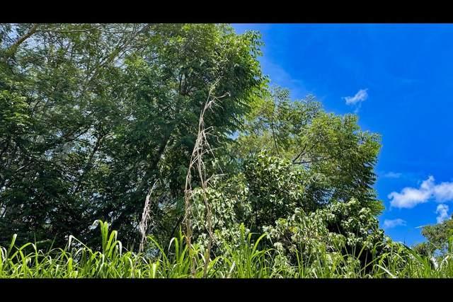 S Kahakai Blvd, Pahoa, HI 96778 (MLS #651680) :: LUVA Real Estate