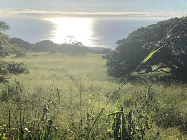 79-7378 Hawaii Belt Rd, Kealakekua, HI 96750 (MLS #651814) :: LUVA Real Estate