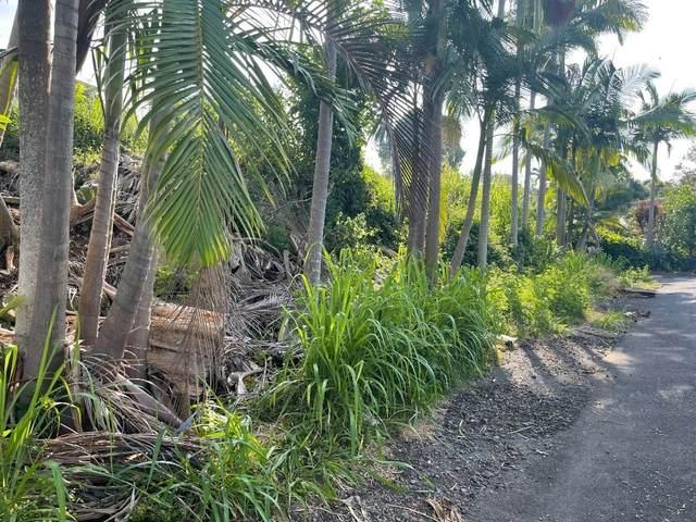 Address Not Published, Captain Cook, HI 96704 (MLS #651815) :: LUVA Real Estate