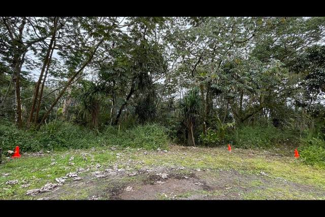 Pahoa Cir, Pahoa, HI 96778 (MLS #651826) :: Corcoran Pacific Properties