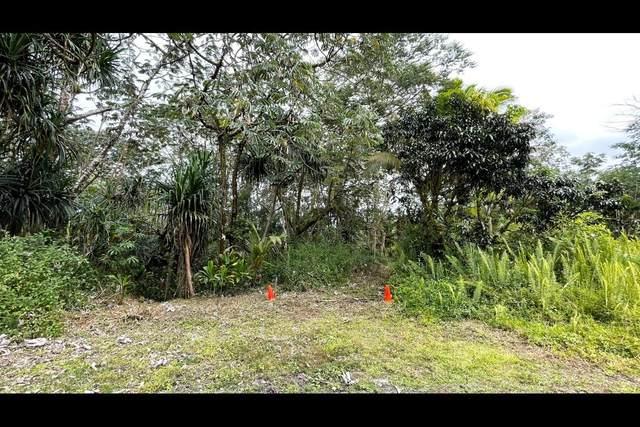 Pahoa Cir, Pahoa, HI 96778 (MLS #651827) :: Corcoran Pacific Properties