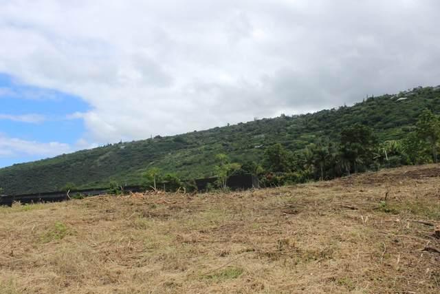 82-5788 Lower Napoopoo Rd, Captain Cook, HI 96704 (MLS #651845) :: LUVA Real Estate