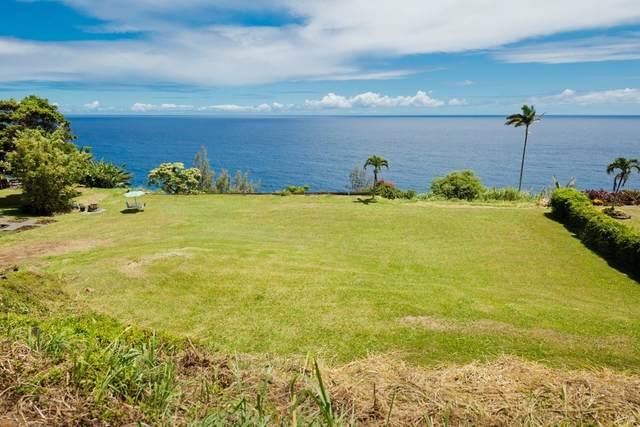 35-113 Lanikai Pl, Papaaloa, HI 96780 (MLS #651879) :: Corcoran Pacific Properties