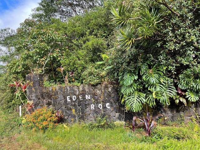 Naia St, Mountain View, HI 96771 (MLS #651905) :: Aloha Kona Realty, Inc.