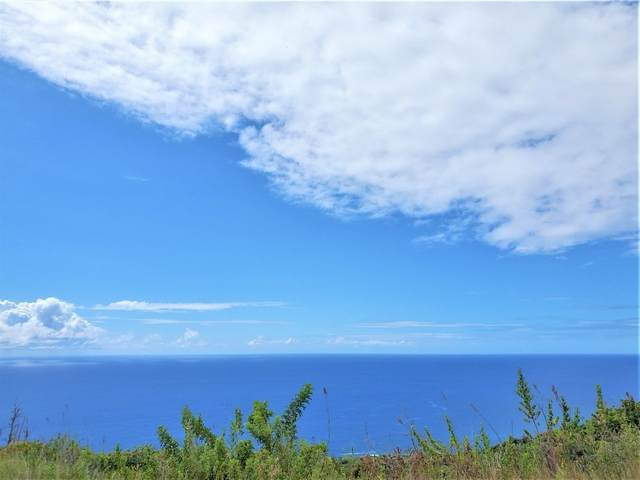Kukio O Pae, Captain Cook, HI 96704 (MLS #651966) :: LUVA Real Estate