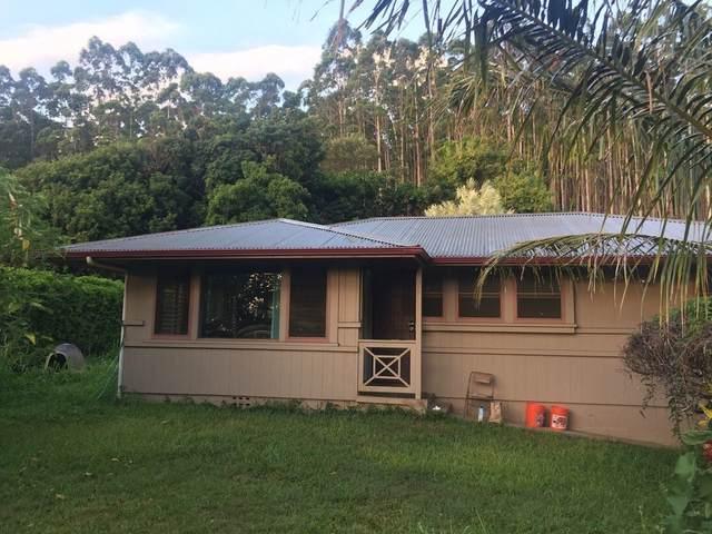 43-1499 Kaohe Pl, Paauilo, HI 96776 (MLS #651992) :: LUVA Real Estate