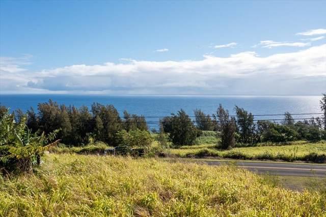 39-3195 Old Mamalahoa Hwy, Ookala, HI 96774 (MLS #652025) :: Corcoran Pacific Properties