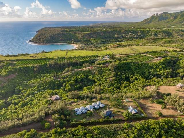 7218-C Koolau Rd, Kilauea, HI 96754 (MLS #652093) :: Corcoran Pacific Properties