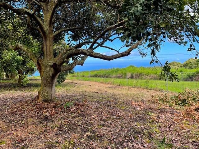 89-995 Hawaii Belt Rd, Captain Cook, HI 96704 (MLS #652474) :: LUVA Real Estate