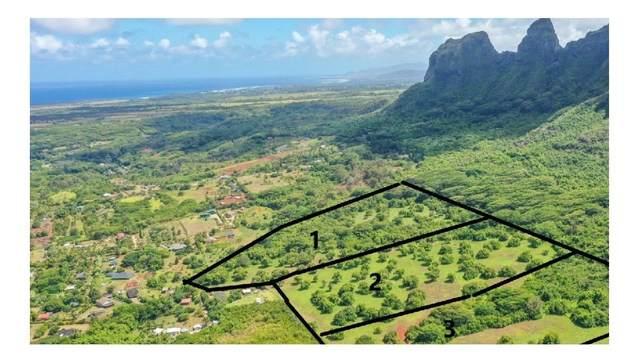 Hui Rd B, Anahola, HI 96703 (MLS #652522) :: Corcoran Pacific Properties