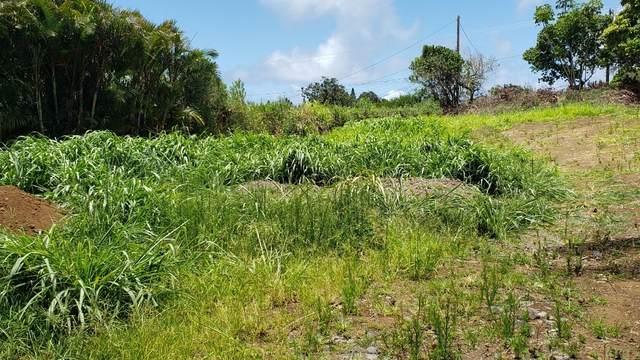 55-532 Banana Ranch Rd, Hawi, HI 96719 (MLS #652541) :: Hawai'i Life