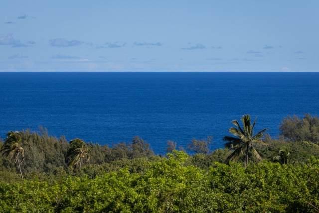53-338 Kapanaia Rd, Kapaau, HI 96755 (MLS #652629) :: LUVA Real Estate