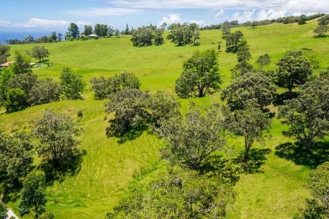 Kukuipapa Rd, Honokaa, HI 96727 (MLS #652657) :: LUVA Real Estate