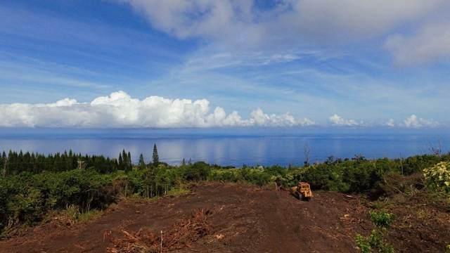 88-1639 Malolo Drive, Captain Cook, HI 96704 (MLS #652686) :: Hawai'i Life