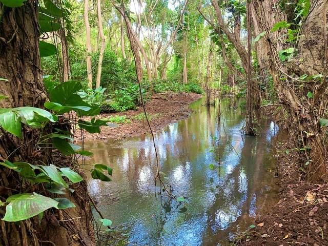 Kahumoku Rd, Lihue, HI 96766 (MLS #652818) :: Kauai Exclusive Realty