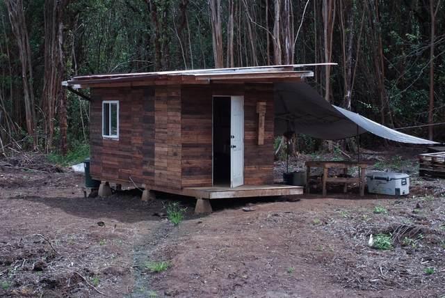 17-4947 Laiki Road, Mountain View, HI 96771 (MLS #652993) :: LUVA Real Estate