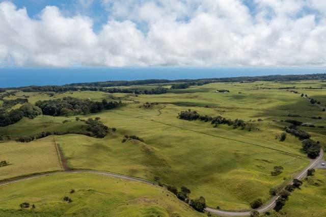 47-4526 Old Mamalahoa Hwy, Kamuela, HI 96743 (MLS #653067) :: LUVA Real Estate