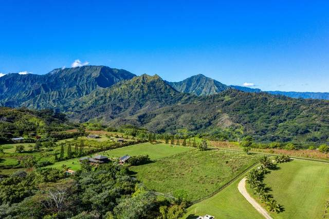 Kapaka Road, Princeville, HI 96722 (MLS #653105) :: Kauai Exclusive Realty