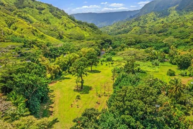Alaeke Rd, Hanalei, HI 96714 (MLS #653128) :: Iokua Real Estate, Inc.