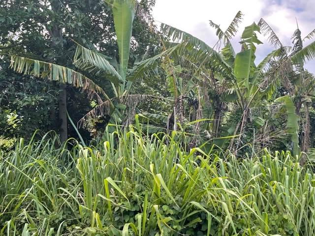 Keoki Road, Naalehu, HI 96772 (MLS #653408) :: LUVA Real Estate