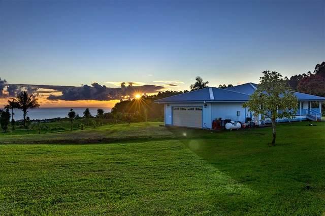 28-321 Onelauena Pl, Pepeekeo, HI 96783 (MLS #653414) :: Corcoran Pacific Properties