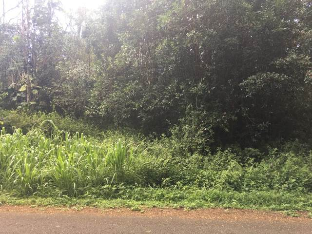 N Malolo St, Pahoa, HI 96778 (MLS #653445) :: LUVA Real Estate