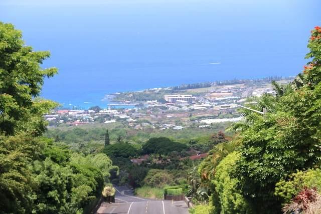 Address Not Published, Holualoa, HI 96725 (MLS #653730) :: LUVA Real Estate