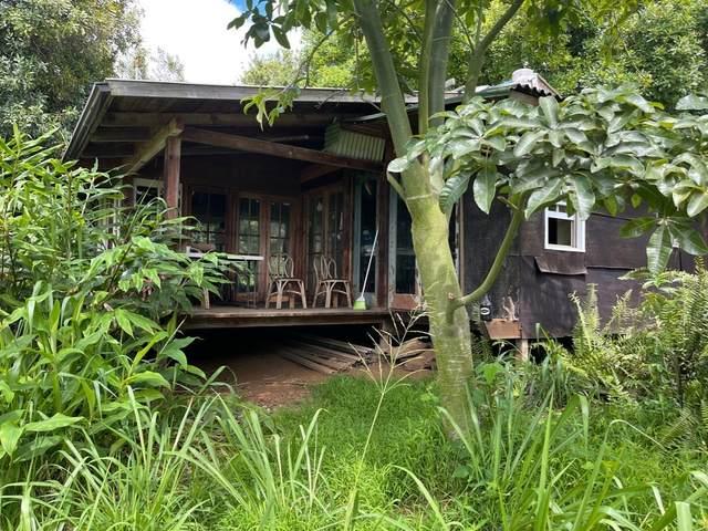 96 Wood Valley Road, Pahala, HI 96777 (MLS #653751) :: Iokua Real Estate, Inc.