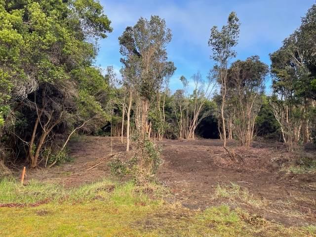 Ka'akai Place, Volcano, HI 96785 (MLS #653790) :: Corcoran Pacific Properties