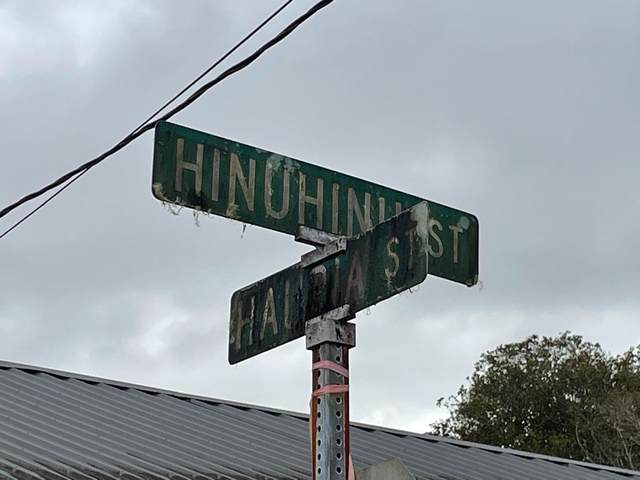 Hinuhinu St, Mountain View, HI 96785 (MLS #654021) :: LUVA Real Estate