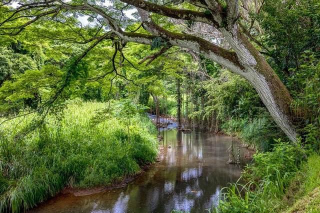 6281 Hauaala Rd, Kapaa, HI 96746 (MLS #654051) :: Kauai Exclusive Realty