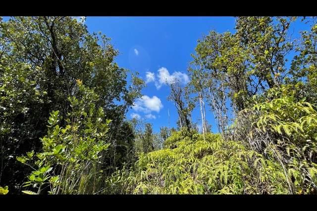 Malia Aina Rd, Volcano, HI 96785 (MLS #654225) :: LUVA Real Estate