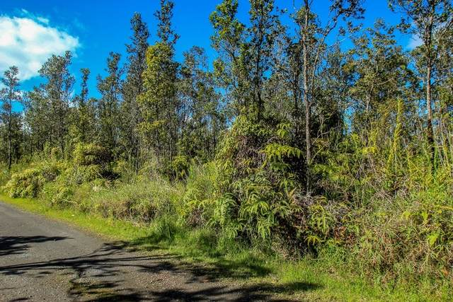 11-2974 Noe Kuahiwi Rd, Volcano, HI 96785 (MLS #654304) :: Team Lally