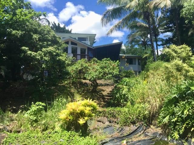 12-7800 Kalapana Kapoho Beach Rd, Pahoa, HI 96778 (MLS #654314) :: LUVA Real Estate
