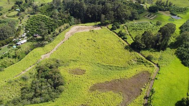Address Not Published, Papaaloa, HI 96780 (MLS #654317) :: Aloha Kona Realty, Inc.