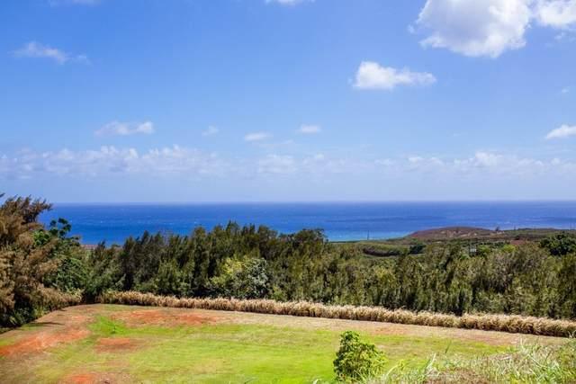 Kaena St, Kalaheo, HI 96741 (MLS #654337) :: Hawai'i Life