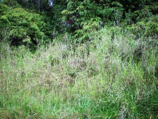 Address Not Published, Naalehu, HI 96772 (MLS #654373) :: LUVA Real Estate