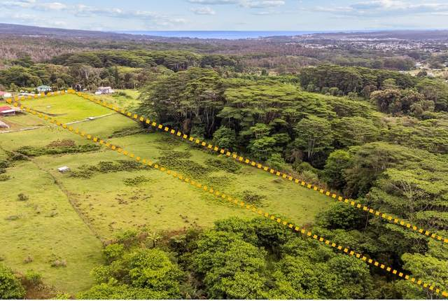 691 Hoaka Road, Hilo, HI 96720 (MLS #654404) :: Iokua Real Estate, Inc.