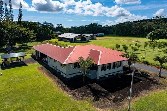 983 Ahuna Rd, Hilo, HI 96720 (MLS #654410) :: Iokua Real Estate, Inc.