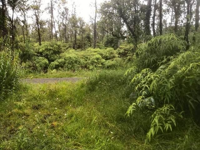 Apuakehau Rd, Volcano, HI 96785 (MLS #654507) :: LUVA Real Estate
