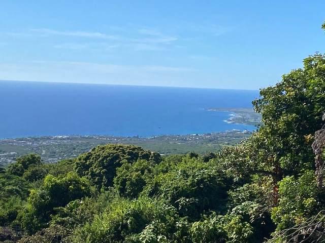 Address Not Published, Holualoa, HI 96725 (MLS #654569) :: LUVA Real Estate