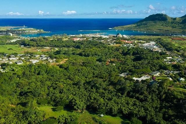 Kahumoku Rd, Lihue, HI 96766 (MLS #654832) :: Corcoran Pacific Properties