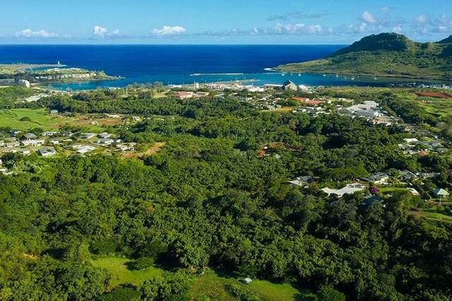 Kahumoku Rd, Lihue, HI 96766 (MLS #654843) :: Corcoran Pacific Properties