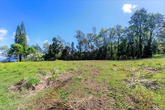 41-1680 Kaala Rd, Paauilo, HI 96776 (MLS #654959) :: Aloha Kona Realty, Inc.