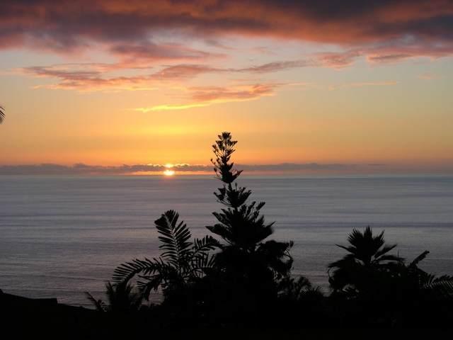 77-344 Nohealani St, Kailua-Kona, HI 96740 (MLS #655068) :: LUVA Real Estate