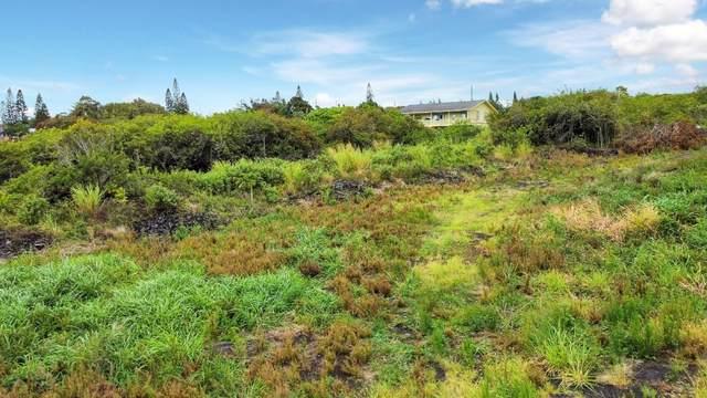 Kekuhaupio Rd, Naalehu, HI 96772 (MLS #655076) :: Aloha Kona Realty, Inc.